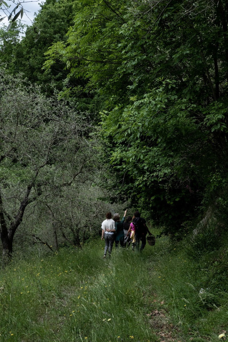 foraging italy